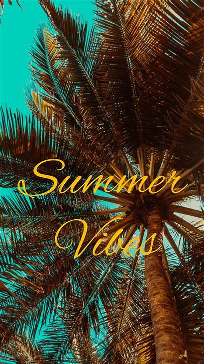 Vibes Summer Palm Vibe Iphone Background Mood