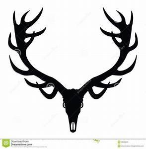 Elk Skull Clipart - Clipart Suggest