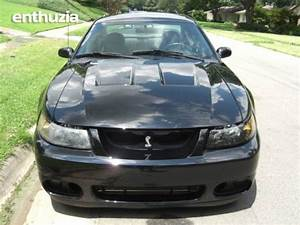2003 Ford 2003 Terminator SVT Mustang Cobra [SVT Mustang Cobra] For Sale | Dallas Texas