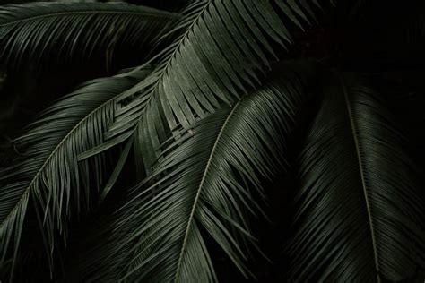 grey aesthetic desktop wallpapers