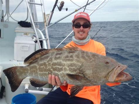 grouper fishing islamorada groupers tactics surefire summer tips properly gear offshore