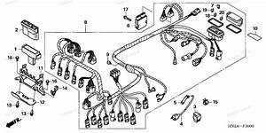 2008 Honda Rubicon 500 Wiring Diagram  Honda  Auto Wiring