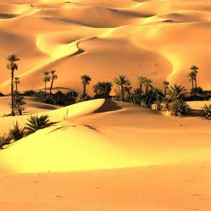 The Earth's Spreading Deserts | NewSky24