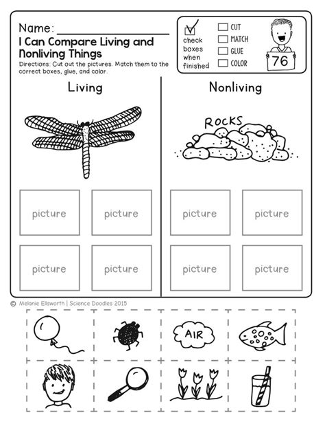 worksheets for kindergarten science kindergarten science