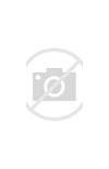 Почётный донор россии является лми льготником
