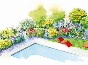 Quel Arbre Planter Près D Une Maison : quelles plantes au bord de ma piscine ~ Dode.kayakingforconservation.com Idées de Décoration