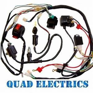 Full Electrics Wiring Harness Cdi Coil 110cc 125cc Atv