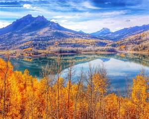 Autumn, Forest, Trees, With, Yellow, Leaves, Blue, Sky, Mountain