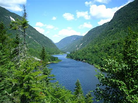 Eastern Forestboreal Transition Wikipedia