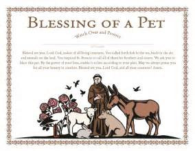 easter plays for church churchpublishing org st francis blessing of a pet