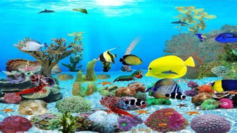 Fish Animation Wallpaper Free - animated aquarium wallpaper for windows 7 free