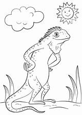 Iguana Coloring Cartoon Dragon Lizard Pages Bearded Drawing Printable Activity Wanna Template Categories Worksheets Templates A4 Getdrawings Dot sketch template
