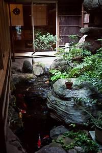 indoor water garden house plans 25+ Best Ideas about Indoor Pond on Pinterest | Goldfish ...