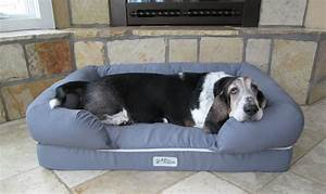 petfusion ultimate dog lounge slash pets With anti tear dog bed