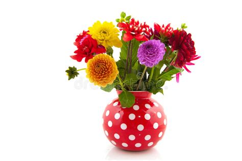 Tulpenstrauß In Vase by Bouquet Dahlias In Vase Stock Image Image Of Spotted