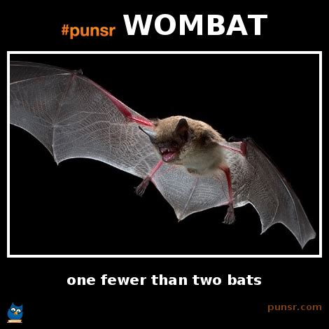Wombat Memes - punsr wombat punsr com there is a joke in every word the world s largest pun dictionary