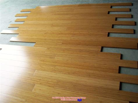 Bamboo Flooring Pros And Cons  House Designing Ideas