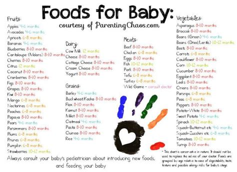 baby  food chart ideas  pinterest pregnancy months chart baby food charts