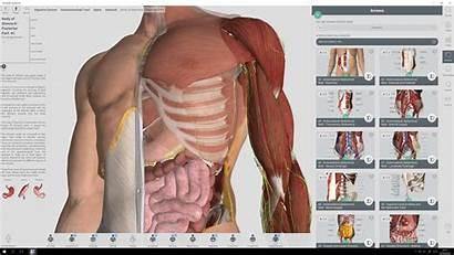 Anatomy Complete Windows Human Software 3d App