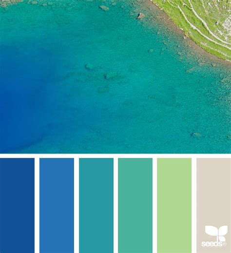 color seeds best 25 turquoise color palettes ideas on