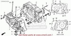 2002 Honda Rancher 350 Parts