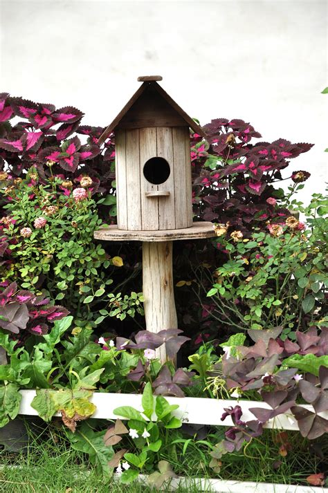 bird house tips homepad properties llc