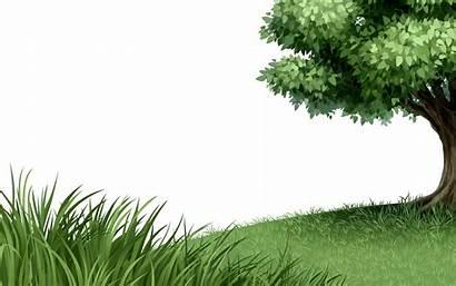Nature Grass Tree Logos Transparent Natural Leaf