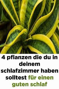 Pflanzen Für Gute Raumluft : 4 pflanzen die sie in ihrem schlafzimmer f r eine gute ~ A.2002-acura-tl-radio.info Haus und Dekorationen