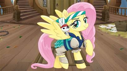 Pony Pirates Ponies Wallpapers Flattershy Youloveit
