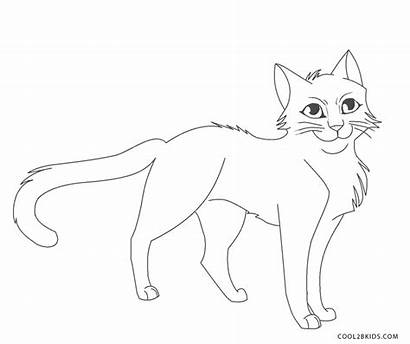 Coloring Cat Cats Pages Warrior Printable Cool2bkids