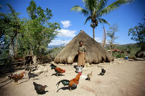 """""""people Need Nature To Thrive"""" Recovering From Conflict"""