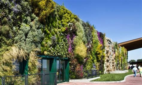 Giardini Pensili Come Soluzione Green Per Il Risparmio