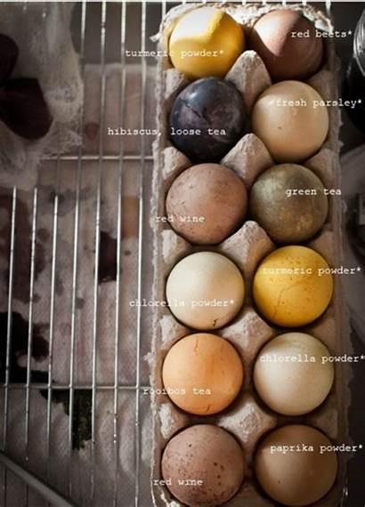 Eggs Easter Natural Egg Diy Dyed Dye