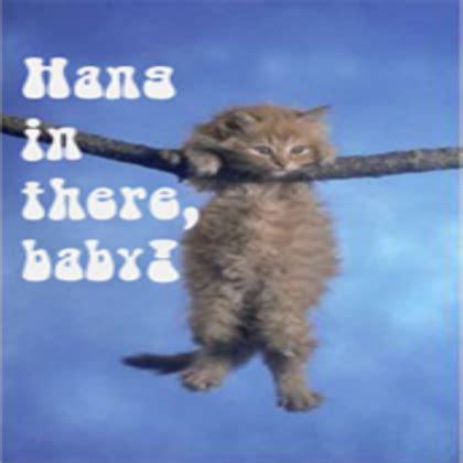 Hang In There Cat Meme - uncategorized outrunningthefork