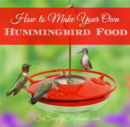 hummingbird food recipes 1000 images about birds and hummingbirds on pinterest hummingbird food recipes hummingbirds
