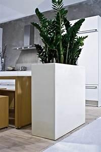 Moderne Deko Ideen : zimmerpflanzen deko ideen ~ Watch28wear.com Haus und Dekorationen
