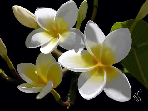 bildes ar puķēm - Spoki