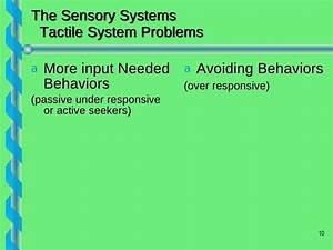 Sensory Presentation7 2009 3