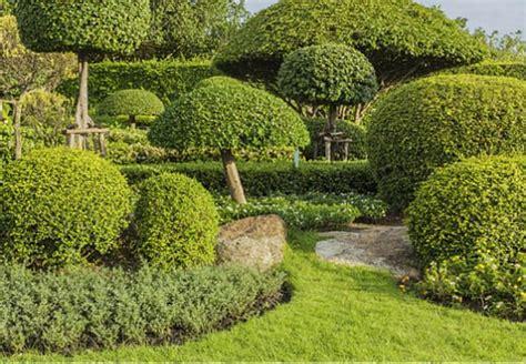 Japanischer Garten Gestaltungsideen by Garden Baume Japanischer Garten