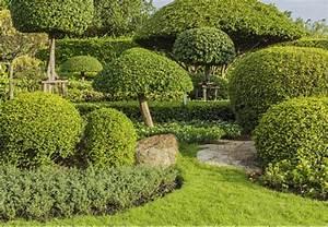 Pflanzen Japanischer Garten : japanischer garten gestaltungsideen obi ratgeber ~ Sanjose-hotels-ca.com Haus und Dekorationen