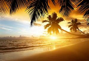 Wallpaper Tropical, Sunset, Paradise, Beach, Coast, Sea ...