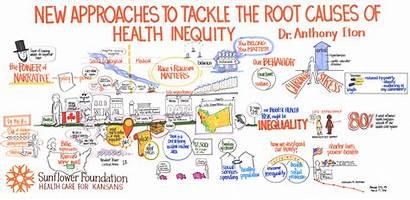 Health Inequity Root Causes Illustration Wittmann Kriss