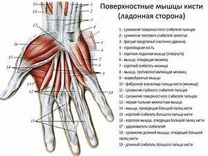 Увеличился и болит сустав на большом пальце руки