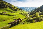 Explore Germany's Beautiful Black Forest | Radisson Blu