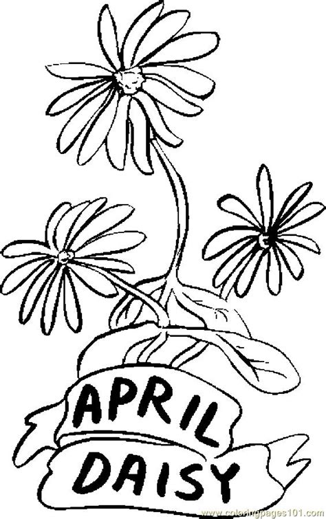 april daisy coloring page  flowers coloring pages coloringpagescom