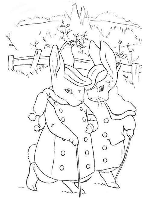 tale  peter rabbit coloring page coloring sky