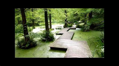 Besuch Im Botanischen Garten Der Ruhruniversität Bochum