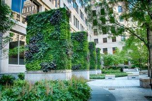 benefits  green walls  vertical gardens green walls