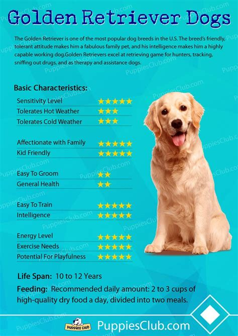 dog breeds characteristics images  pinterest
