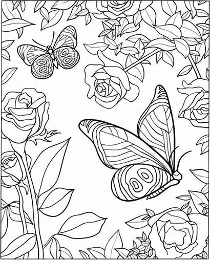 Coloring Pages Butterfly Adults Adult